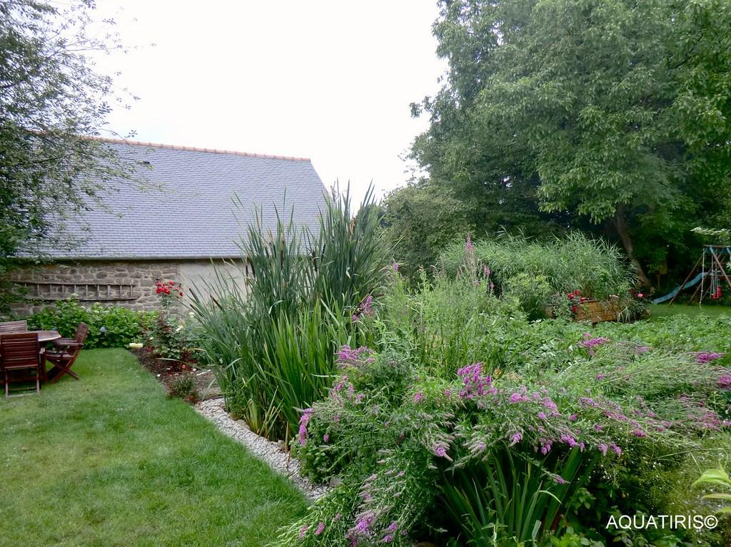 aquatiris-jardin-assainissement-19.jpg